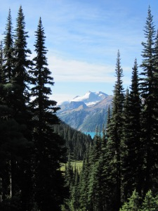Garibaldi as seen from the walking track near Taylor Meadows