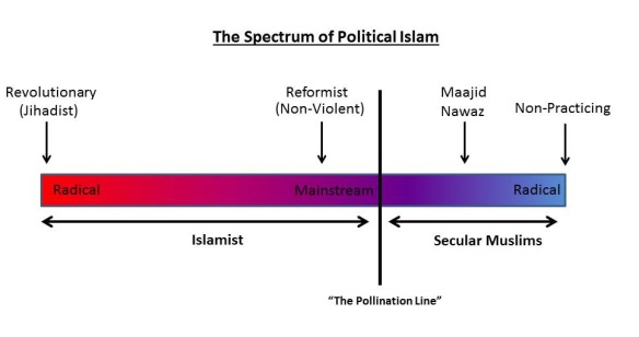 Spectrum of Political islam