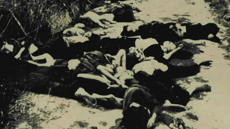 an analysis of the my lai massacre in the vietnam war The my lai massacre took place early in the tet offensive, a major push by the communist viet cong — national front for the liberation of south vietnam — forces to drive out the south vietnamese government troops and the us army.